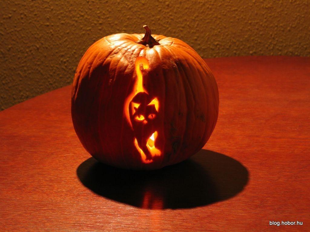 Halloween Pumpkins, Jack O' Lanterns 2006
